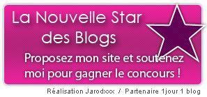 concours de la nouvelle star des blogs