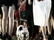Casting figurant(e)s public défilé mode