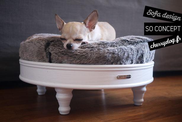 photos so concept des paniers design et modulables pour chiens paperblog. Black Bedroom Furniture Sets. Home Design Ideas
