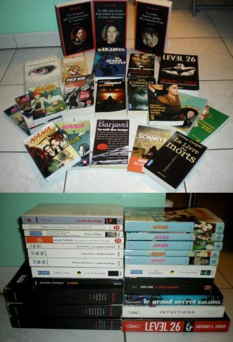 http://bazar-de-la-litterature.cowblog.fr/images/NouveauxArrivants2012/SEMAINE62VIDEGRENIER2.jpg