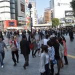 Voyage Japon - Shibuya