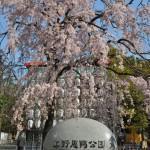 Voyage Japon - Ueno