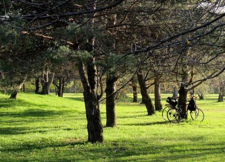 Vélo au Parc Maisonneuve