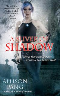 Abby Sinclair T.2 : A Sliver of Shadow - Allison Pang