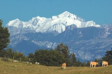Saleve Mont-Blanc.JPG