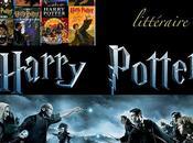Dossier Harry Potter, chronique tome