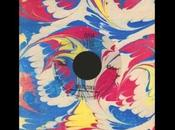 Animal Collective infos leur prochain album