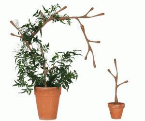 Des tuteurs pour plantes design