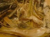 Blancs poireaux sauce légère curry