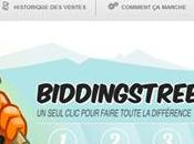 BiddingStreet: News mois 2012