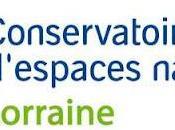 Conservatoire d'Espaces Naturels Lorraine nouvelle naissance