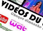 VIDÉOS #35:Une belle sélection vidéos du...