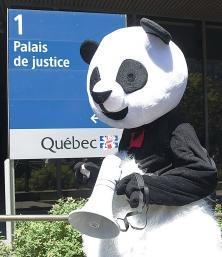 Julien Villeneuve, professeur de philosophie au collège de Maisonneuve, s'est présenté au palais de justice dans son célèbre costume d'Anarchopanda.