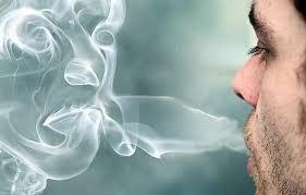 Arrêter de fumer avec le kudzu !!!