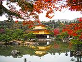 conséquences imprévues protocole Kyoto