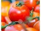 NUTRITION: Faut-il préférer Bio? L'exemple tomate