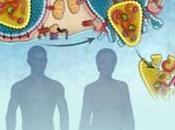 VIH-SIDA: L'efficacité PrEP évaluée pour hétérosexuels NEJM