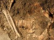 FATIGAY l'actualité squelette Joconde