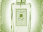 Sweet Lime Cedar, Malone