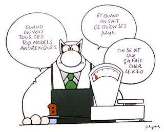 Chat 18 25 ans