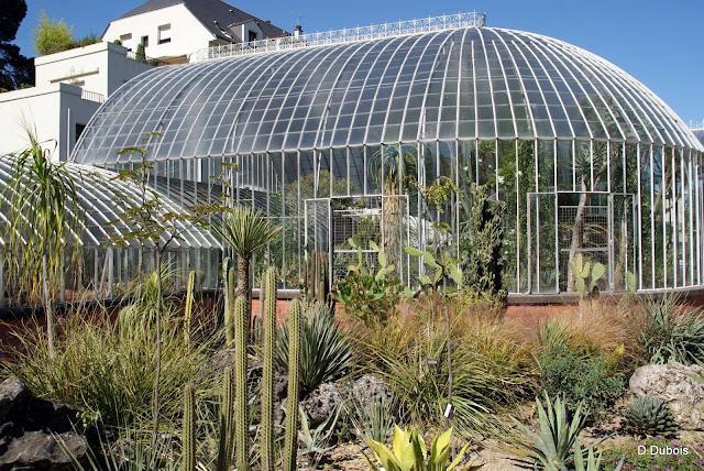 Le jardin des plantes Nantes /2   À Découvrir