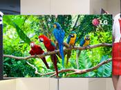 plus grand téléviseur OLED monde signé