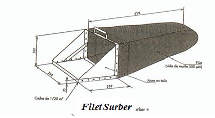Filet Surber