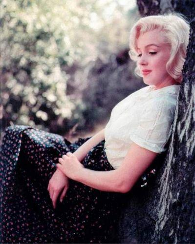 Exposition : Marilyn Monroe, une collection unique de Photographies