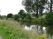 Canal Roubaix.