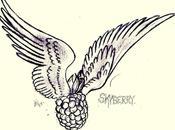 Skyberry musique qu'on joue nous emmène autre part…