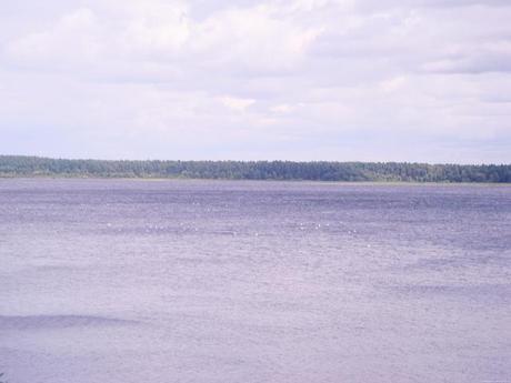 lake, riga zoo Latvia
