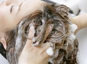 astuces professionnelles pour lutter contre cheveux gras