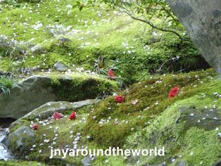 Kyoto, Chemin des Philosophes et Pavillon d'argent