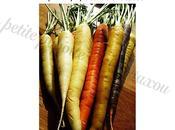 Veloute carottes cumin