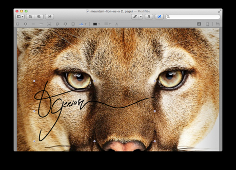 Les meilleures astuces d'OS X Mountain Lion