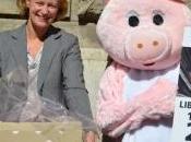"""pétition pour """"libérer truies"""""""