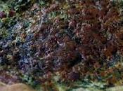 quiche épinards/parmesan/jambon
