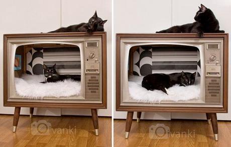 The Vintage Television Set
