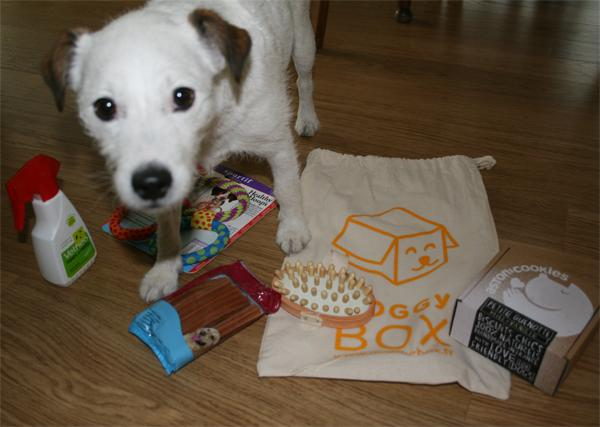 Dolly surkiffe sa DoggyBox !