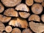 marché poêles bois porte bien