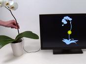 Botanicus Interactus: plante fait office souris