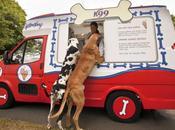 Food Truck pour chiens chauds