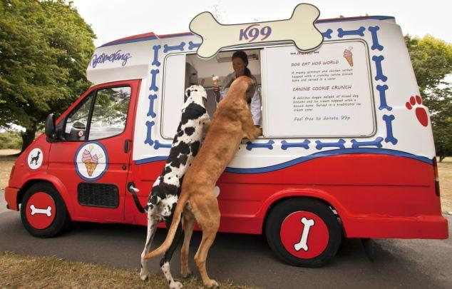 Food Truck pour chiens chauds !