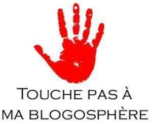 touchepasmablogo