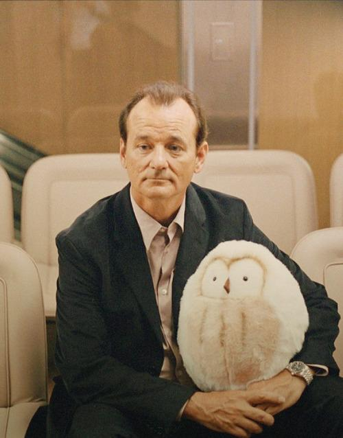 Bill Murray in Wes Anderson's movies