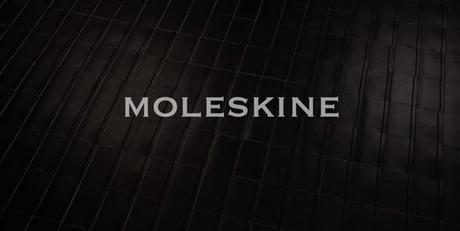 Une année en Stop Motion avec des agendas Moleskine