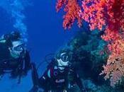 Changez votre avec l'université d'hiver Aquadomia