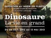 Dinosaure grand Muséum d'Histoire Naturelle Paris