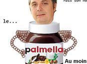Huile Palme Doit-on boycotter Nutella [décryptage]