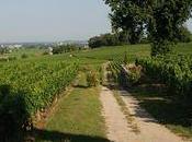 dîner vins Bordeaux